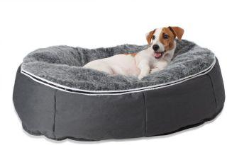 Ambient Lounge Pet Bed Indoor/Outdoor - Medium