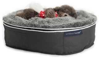 Ambient Lounge Pet Bed Indoor/Outdoor - Small